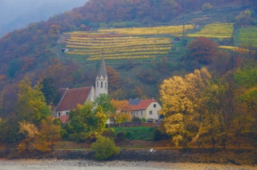 Fall along the Danube