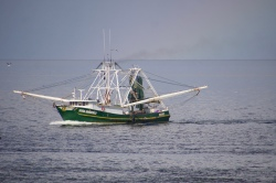 Shrimper off Galveston